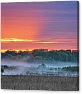 May Ground Fog Canvas Print