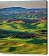 May On The Palouse  Canvas Print