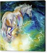 May Waterbaby Equine Canvas Print
