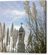 Mayflower Memorial Through The Pampas Grass Canvas Print