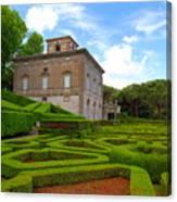 Mazed Garden Canvas Print