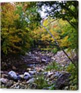 Mcarthur Bridge Over The Roaring Branch Canvas Print
