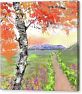 Mccall Splendor Canvas Print