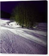 Mccauley Evening Snowscape Canvas Print