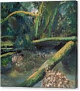Mclane From The Bridge Canvas Print