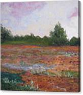 Meadow Creek - Late Summer Canvas Print
