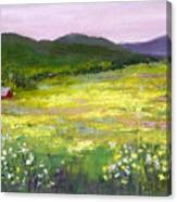 Meadow Of Flowers Canvas Print