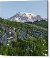 Meadows Of Glory Canvas Print