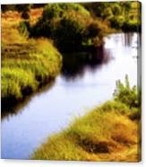 Meandering Channel Canvas Print