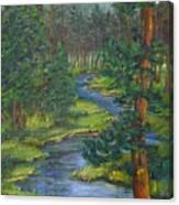 Meandering River Canvas Print
