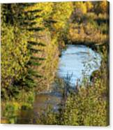 Meandering Stream Canvas Print