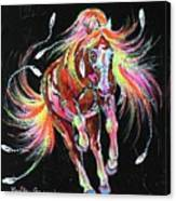Medicine Fire Pony Canvas Print