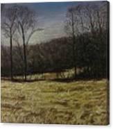 Medina Cornfield Canvas Print