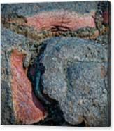 Medium Rare Canvas Print
