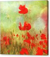 Melody Of Summer Canvas Print