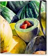 #18 Melons Plus Canvas Print