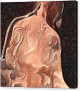 Melted Wax Model Canvas Print
