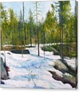 Melting Snow At Umea Norrbotten Sweden 2002   Canvas Print