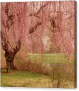 Memories - Holmdel Park Canvas Print