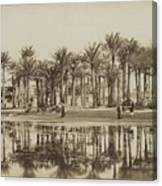 Men With Goats Under Palm Trees On The Water In Bedrechen, Bonfils, C. 1895 - In Or Before 1905 Canvas Print