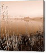 Mendocino Morning Canvas Print
