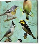 Meridian State Park Canvas Print