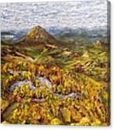 Merlbortice Canvas Print