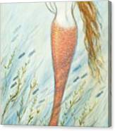 Mermaid And Her Catfish, Goldie Canvas Print