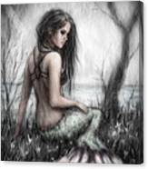 Mermaid's Rest Canvas Print