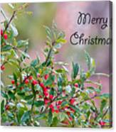 Merry Christmas - Berries Canvas Print
