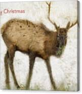Merry Christmas Elk Greeting Card Canvas Print
