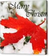 Merry Christmas Leaf Canvas Print