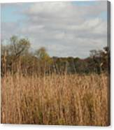 Merwin Prairie Autumn I Canvas Print