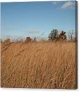 Merwin Prairie Autumn II Canvas Print