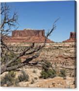Mesas Near Moab Canvas Print