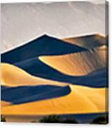 Mesquite Dunes Canvas Print