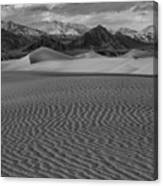 Mesquite Dunes Black And White Canvas Print