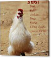 Message From A Chicken Canvas Print