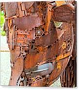 Metal Steer  Canvas Print