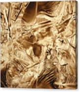 Metamorphoses Canvas Print