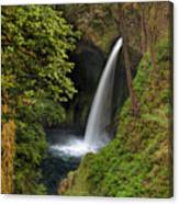 Metlako Falls In Spring Canvas Print