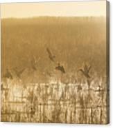 Metzgers Marsh In Fog Canvas Print