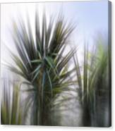 Miami Palms Canvas Print