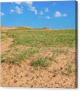 Michigan Sand Dune Landscape In Summer Canvas Print