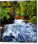 Michigan Waterfall Canvas Print