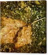 Microcosm Of Fall Canvas Print