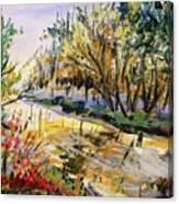 Mid-morning Light Canvas Print