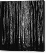 Mid-night Canvas Print