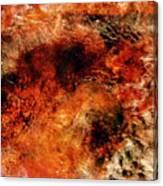 Midas Nebula 2 Canvas Print