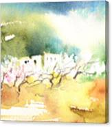 Midday 20 Canvas Print